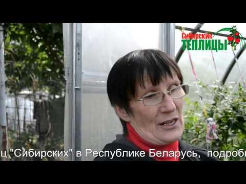 видео: ТЕПЛИЦЫ из поликарбоната, выращивание в теплице отзывы в Беларуси
