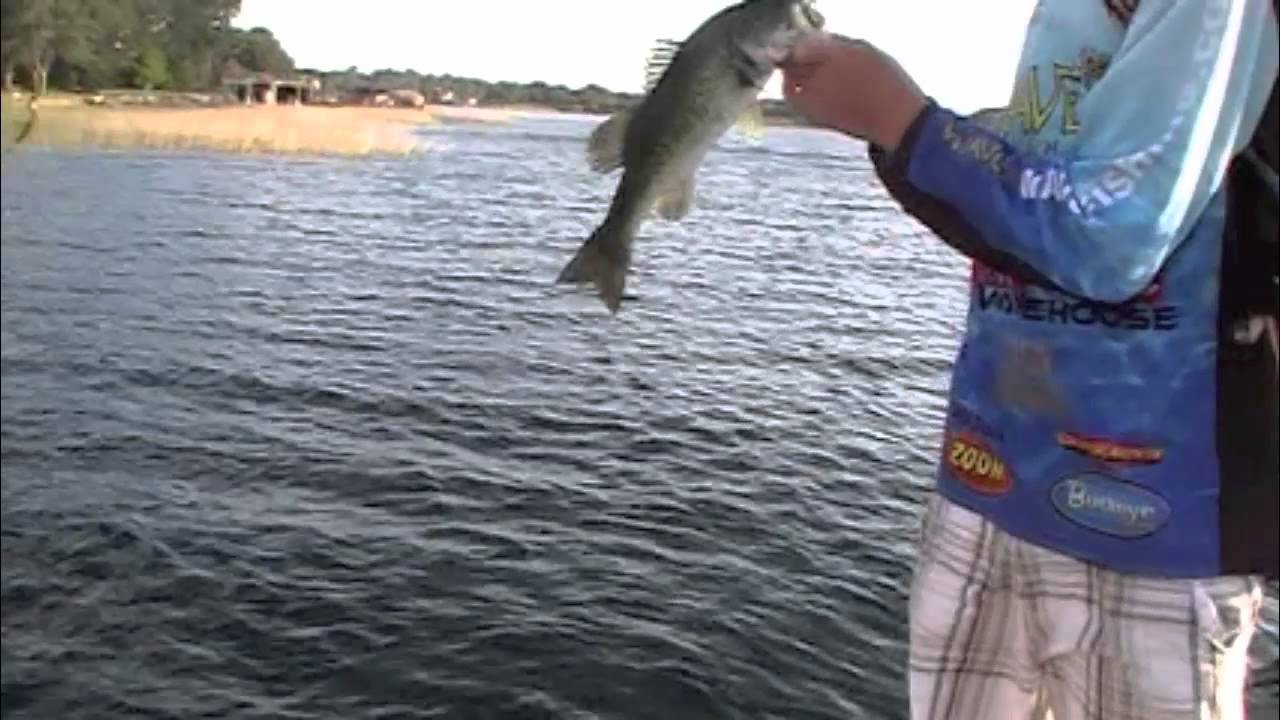 Spring bass fishing on lake cypress youtube for Spring bass fishing