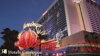 Flamingo Las Vegas Hotel and Casino - Caesars Entertainment - Las Vegas Hotel Tour