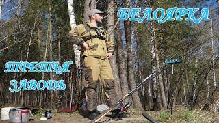 БЕЛОЯРКА Рыбалка на ФИДЕР Третья заводь Хороший клёв