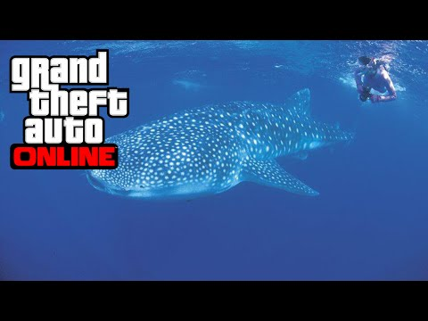 [PS4/Xbox One] SE TRANSFORMER EN ANIMAL MARIN - GTA 5 ONLINE (Peyotl 11)