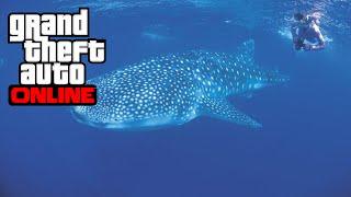 [PS4/Xbox One] SE TRANSFORMER EN ANIMAL MARIN - GTA 5 ONLINE (Peyotl 11)