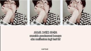 BTS V(김 태형)- Scenery(풍경)(Lyric…