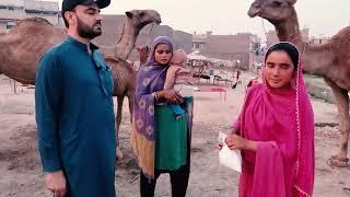 FRESHEST Camel Milk and camel milk benefits   Street Food Peshawar
