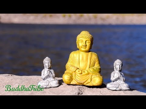 Relaxing Calm Music | Learn to Meditate with Sounds of Nature, New Age Songs ☆BT5