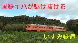 残暑の里山を駆け抜けるいすみ鉄道の列車たち