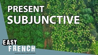 Present subjunctive | Super Easy French 47