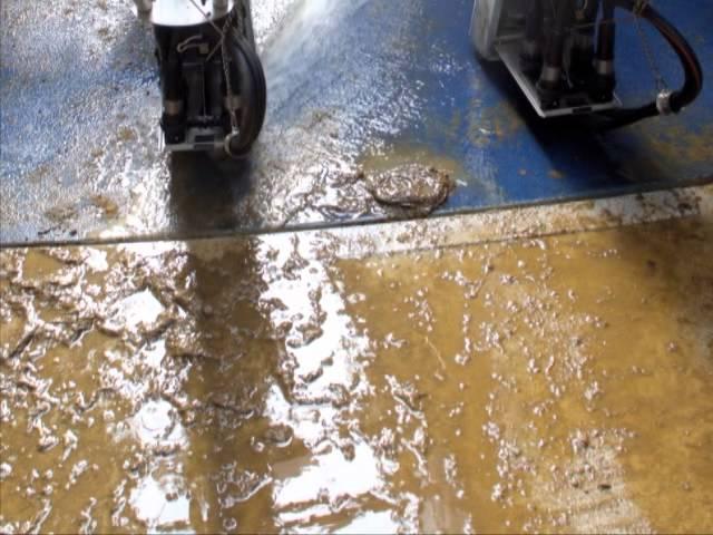 Urine Resistant Flooring Resisting