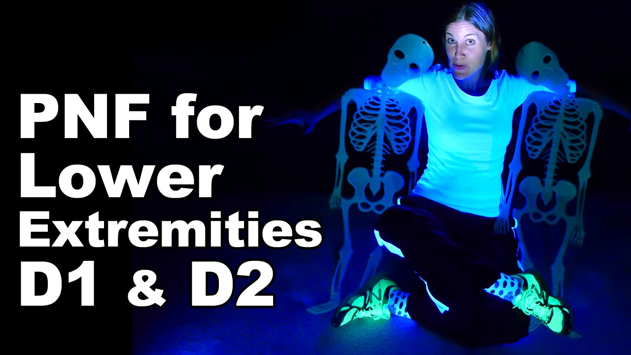 Download PNF Lower Extremities D1 & D2 - Ask Doctor Jo