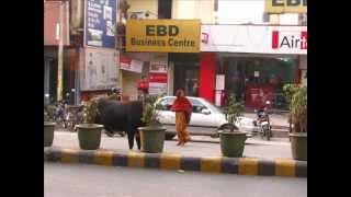 Dehradun India