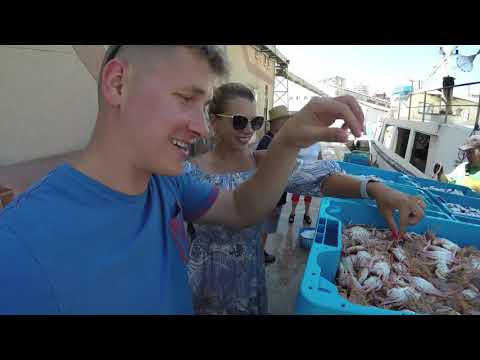 Сколько стоит рыба, где купить самую свежую, настоящие моряки и рестораторы