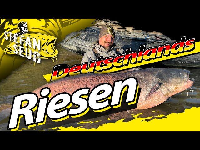 GIGANTISCHES Welsangeln in DEUTSCHLAND | BIG FISH zum GEBURTSTAG | Angeln auf Waller am Rhein