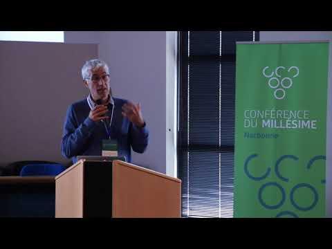 2015 Narbonne Conference du Millesime - Jean Marc Touzard - Projet Laccave