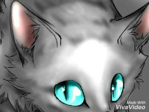 картинки коты-воители кровоцапка