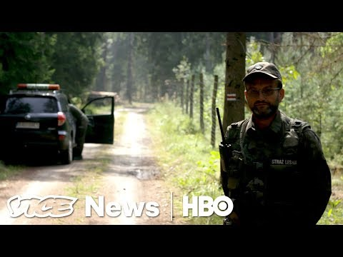 Polands Fight With The EU Over Europe's Oldest Forest (HBO)