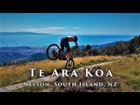 A beautiful piece of singletrail: Te Ara Koa, Nelson, New Zealand