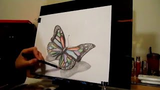 3-D Butterfly Drawing!