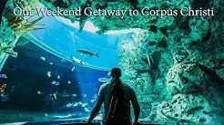This was an Awesome Weekend Getaway | Texas State Aquarium Corpus Christi
