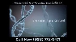 Commercial Insect Control Humboldt AZ