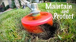Lawn Sprinkler Head Maintenance You Have Not Considered // Lawn Donut Trimming and TOOLS