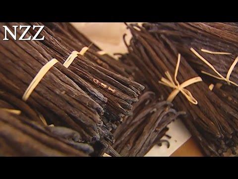 Vanille: Königin der Gewürze - Dokumentation von NZZ Format (2007)