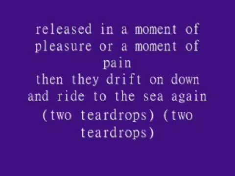 Steve Wariner- Two Tear Drops