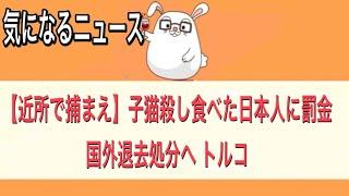 【近所で捕まえ】【子猫殺し食べた日本人に罰金、国外退去処分へ トルコ】【気になるニュース】