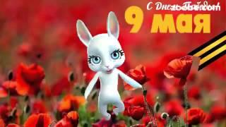 Поздравление с Днем Победы 9 мая!!! Зайка Zoobe.