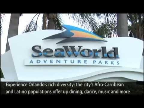 Orlando Trip Guide