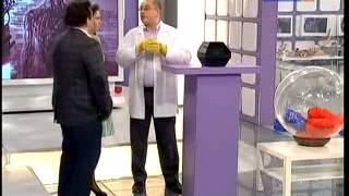 Жир продлевающий жизнь -  конъюгированная линолевая кислота (КЛК 500)