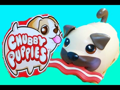 Chubby Puppies BACON Ultimate Dog Park Play Yard Review Toys