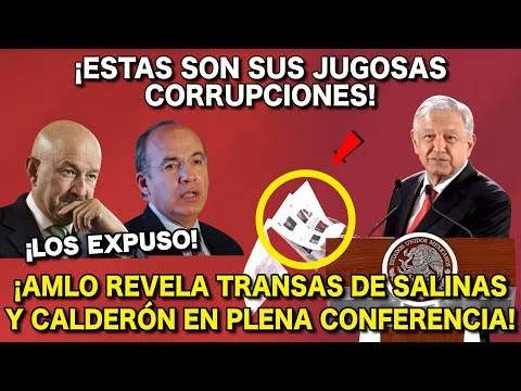 AMLO Revela las Transas de Salinas y Calderón en Plęna Conferencia ¡Mira lo que dijo!
