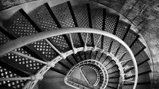 США 3428: вверх по лестнице - куда бы она не вела Светлана Портнова и Михаил Портнов