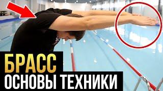 не делай эти ошибки в брассе! Техника плавания брассом пошагово для начинающих