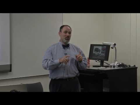 MBA Global Travel Trip Video Sessions 1-4