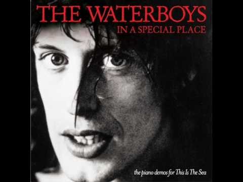 The Whole Of The Moon (In A Special Place) - The Waterboys