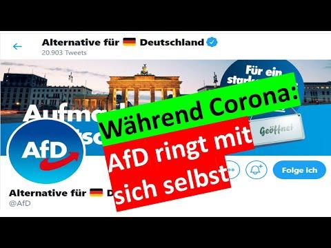 KLARTEXT - Zerreißt es jetzt die AfD?