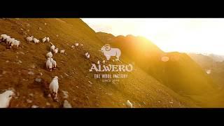 видео ALWERO