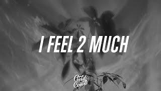 blackbear - I Feel 2 Much (Lyrics)