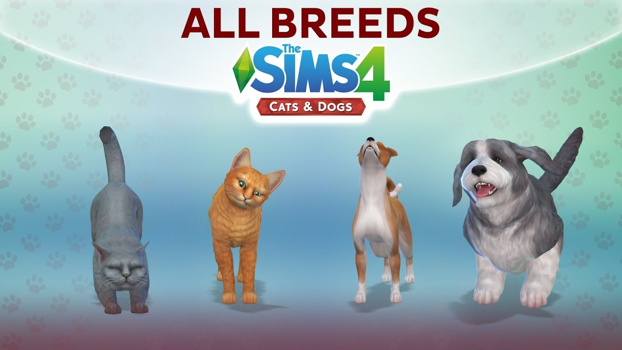 The Sims  Cats And Dogs Youtube