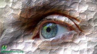 Léčba nemoci suchých očí stravou: Stačí přidat vodu?