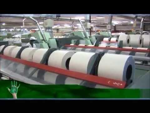 Loyal textile Mills