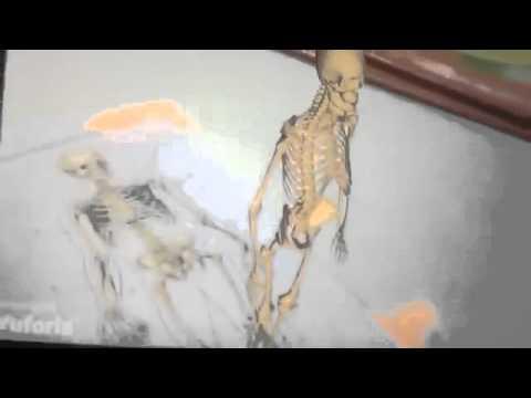 «Технология прорыва» Мастер класс от Дашкиева Михаила [Бизнес молодость] 13.04.2017 г.