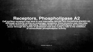 Medical vocabulary: What does Receptors, Phospholipase A2 mean