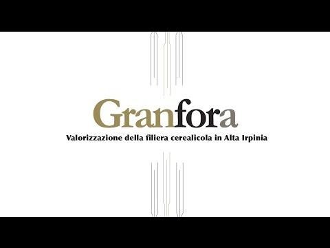 Granfora - Valorizzazione della filiera ceralicola in Alta Irpinia