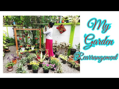 Garden Rearrangement | Garden Ideas | Makeover