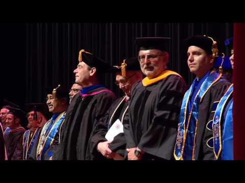2017 Illinois Tech Stuart School of Business Commencement