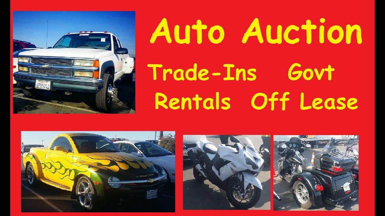 Bidding At Car Auction Live Wholesale Auto Auctions Cars Video