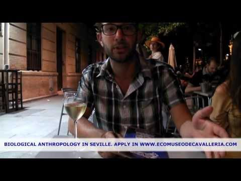 Biological Anthropology in Seville (Spain)
