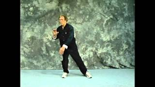 Yang Style Tai Chi Long Form-Front View-Gilman's Modification
